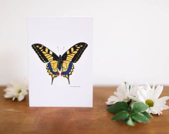 Yellow Butterfly Greeting Card and Note Card