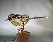 Bird on Hatchet Head #1433