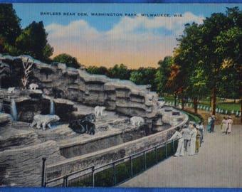 Barless Bear Den Washington Park Zoo Milwaukee Wisconsin 1950 Linen Postcard