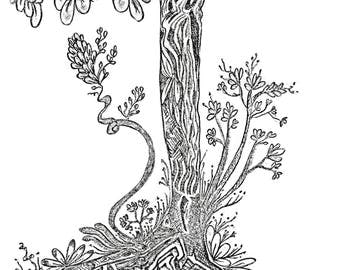 The Old Tree Pen Drawing Art Print On Cardstock