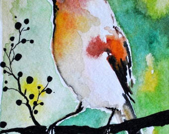 Original Bird Watercolor ACEO Red Robin Miniature Painting