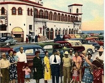 Vintage Florida Postcard - Hungry Pelicans at the Recreation Pier, St. Petersburg (Unused)