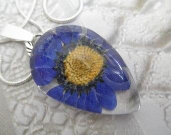 Denim Blue Daisy Glass Teardrop Pressed Flower Pendant-April's Birth Flower-Nature's Wearable Art-Symbolizes Loyal Love