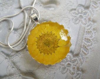 Sunshine Yellow Daisy Pressed Flower Crown Pendant Beneath Glass-Symbolizes Loyal Love,Innocence-April's Birth Flower-Nature's Wearable Art