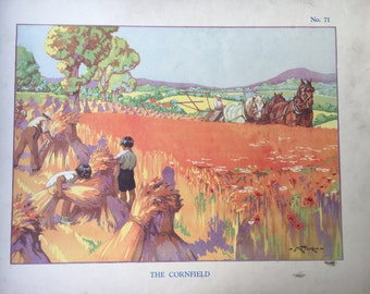 Vintage School Poster THE CORNFIELD Countryside Horses Childhood Educational Country Farm Nature