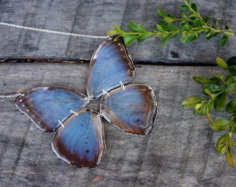 Emperor Morpho Butterfly Necklace, Irridescent Blue Wings, Full Real Butterfly, Wing Jewelry, Resin Wing, Complete Butterfly