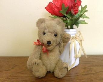 Vintage Teddy Bear - Mohair Teddy Baby Style Bear - Austrian or German Bear