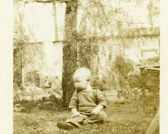 "Vintage Photo ""Wishing for a Playmate"" Baby Yard Snapshot Antique Photo Old Black & White Photograph Found Paper Ephemera Vernacular - 157"