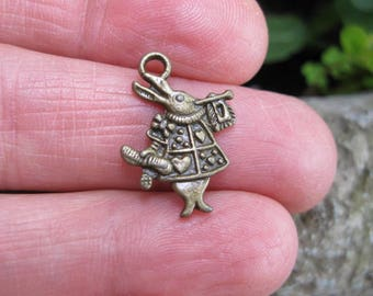 SALE - 10 Rabbit Charms in Bronze Tone - C2557