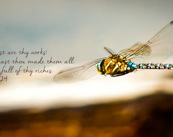 Nature, Dragonfly, Metal Print, Yellowstone, Photo Print, Photography, Scripture