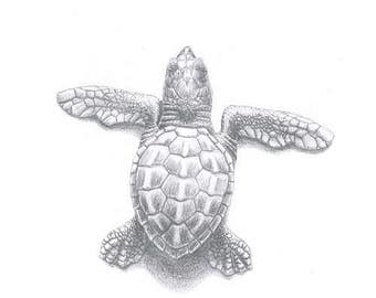 Hatchling sea turtle Greeting Card (code LK01)