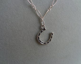 Horseshoe silver (.925) necklace and earrings.