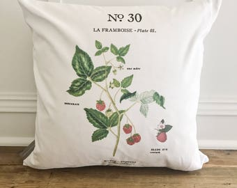 Raspberry Botanical Pillow Cover