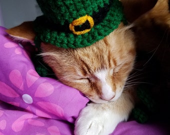 Cat St Patrick's Day Leprechaun Bowler Hat