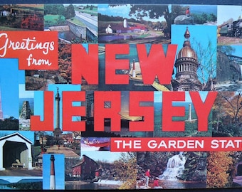 New Jersey, State Postcard, The Garden State, 1970, Kitschy