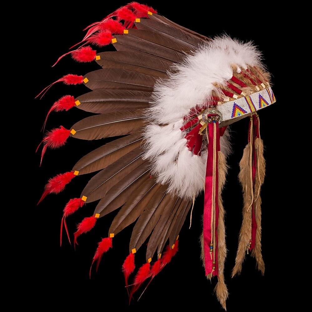 Native American Rainbow Warriors: Plains Style Feather War Bonnet / Headdress Rainbow