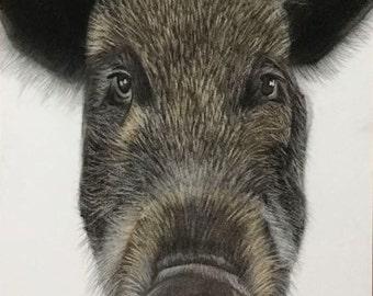 Pet gift/pig portrait/ pig drawing/ pet birthday gift/ custom portrait/ pet drawing/ portrait from photo/ memorial pet