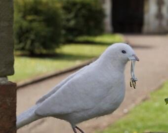 Needle Felt Celebration / Wedding White Dove Bird Sculpture
