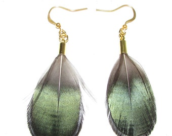 Dark Green Black Gold Lady Amherst Pheasant Feather Earrings Drop Hook Vtg 888