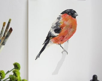 Garden Bird Print - Bullfinch