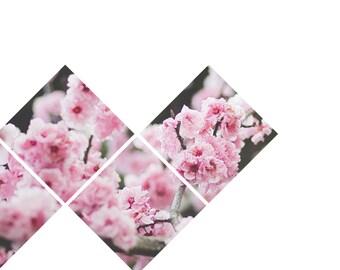 Sakura Art Poster