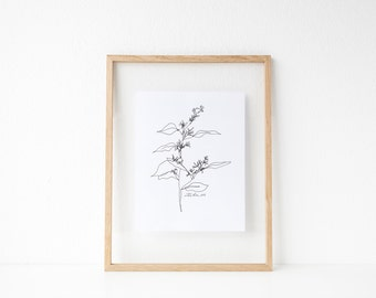 "Eucalyptus Line Drawing // 8x10"" or 8.5x11"" Print"