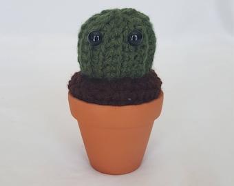 Adorable Crochet Cactus