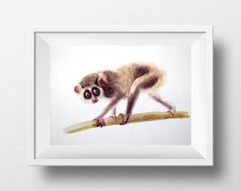 Watercolor painting of loris, Original Painting, Kids Illustration, Animal Illustration, Kids Room Decor, Wall Decor, Animals Painting,