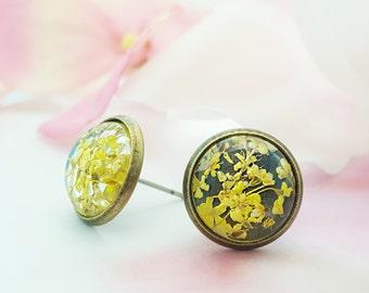 Real Flower Stud Earrings, Little Yellow Flower Earrings, Yellow Dried Flower Petals, Brass Flower Studs, Yellow Daisies, E6506
