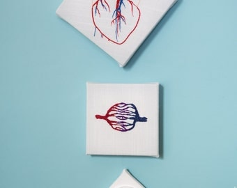 Hand embroidered/knit cardiology set