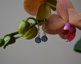 Nickel free blue and green earrings - original juwelry for any occasion