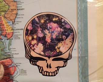 5x5 Large Vinyl Fairy Steal Your Face Sticker