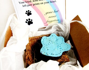 Unique Pet Sympathy Card - Forget Me Not Seeds Plantable Paper Paw with Flower Pot and Gift Box