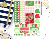 Watermelon Collection Sampler Planner Stickers! KT543