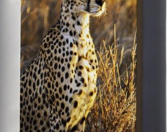 Canvas 16x24; Cheetah, Serengeti National Park In Tanzania