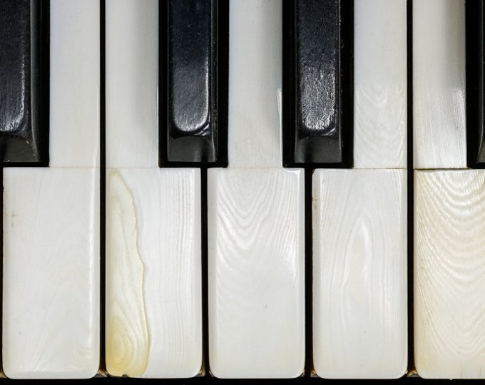 PIANO KEYS | modern fine art photography blank note cards custom books interior wall decor affordable pictures –Rick Graves Spring Green