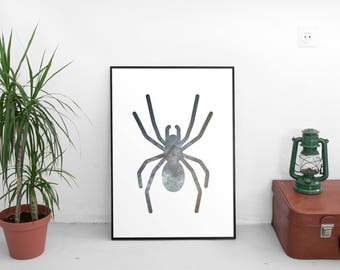 Space spider - Digital Download - A3 and A4 - Poster of a silhouette of stylized spider, combined with a photograph of space.