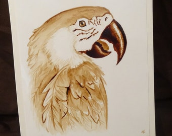 Macaw Parrot Coffee Painting