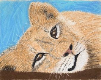 The lion cub: Soft pastel painting