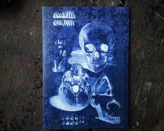 Macabre Medical Illustration of Gothic Skull, Skeleton & Teeth. Oddity Anatomical Art. Occult Wiccan Witchcraft Love Spell, Luxury Card.