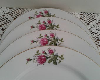Floral Dinner Plates with roses, great condition
