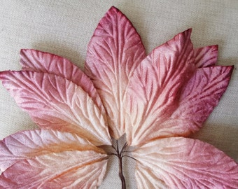 Velvet Leaves, pale violet red