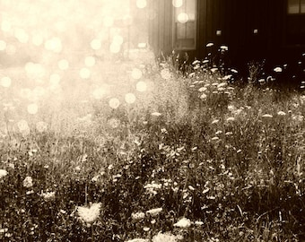 Dreamy garden photography, shabby-chic print, cottage style, bohemian, nature photography, landscape, sepia, ethereal, bokeh, wildflowers