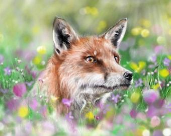freddie the fox