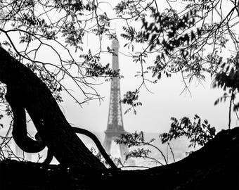 Eiffel Tower Black and White Photography - Paris Rooftops - Wall Art Print - Paris Decor - Paris Photography - Tour Eiffel B/W - 0041