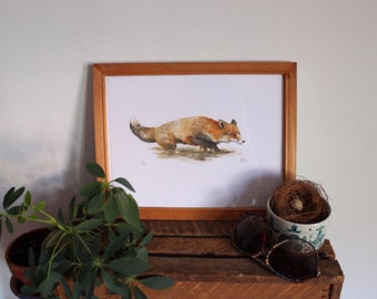 Illustration Fox red watercolor