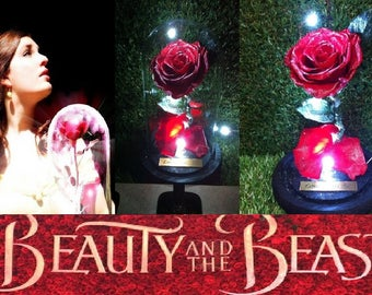Beauty and The Beast Rose 100% Real Flower + Glass Jar Dome + Free ENGRAVING + White LED Lights - Last 5 Years -Belle Disney Enchanted 2017