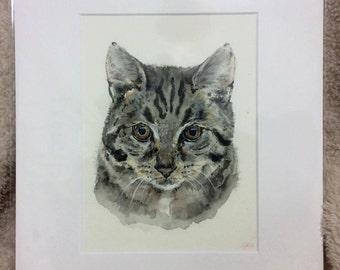 "Tabby 12"" x 10"" Original watercolour painting"