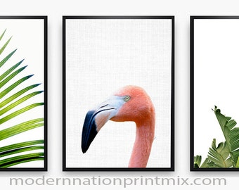 Flamingo Print, Colorful Bird, Flamingo Photography, Flamingo Photo, Flamingo  Bird Art, Flamingo Bird, Flamingo Download, Instant Print