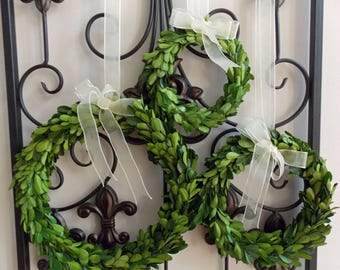 "6"" 8"" 10"" Preserved Boxwood Wreath-Spring Boxwood Wreath-Spring Wreath-Farmhouse Boxwood Wreath-Mini Wreath-Small Wreath-Year Round Wreath"